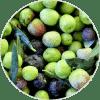 aceite de oliva ingrediente Dehesia Cosmétia EcoNatural