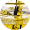 aceite ingredientes Dehesia Cosmética EcoNatural