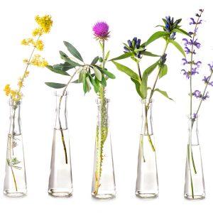 aceites-esenciales-flores