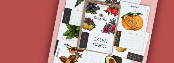 Banner Calendario Club Dehesia Peq