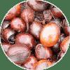 manteca de karité ingrediente de Dehesia Cosmética EcoNatural