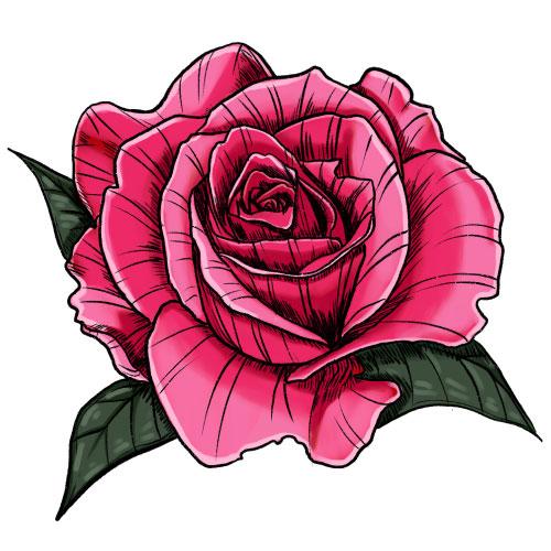 Rosa Dehesia